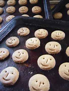 きなことメープルのクッキー